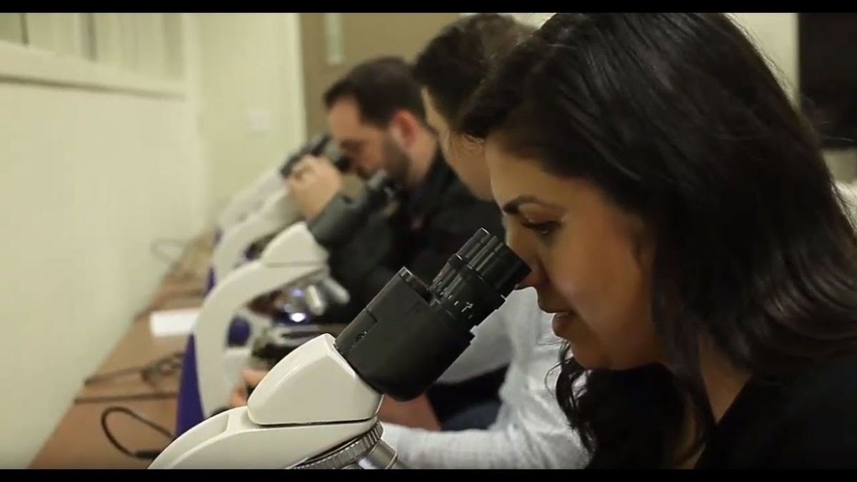 people looking in microscopes