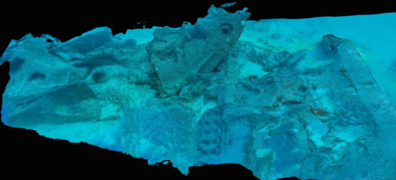 Image of Ryan's 3D model