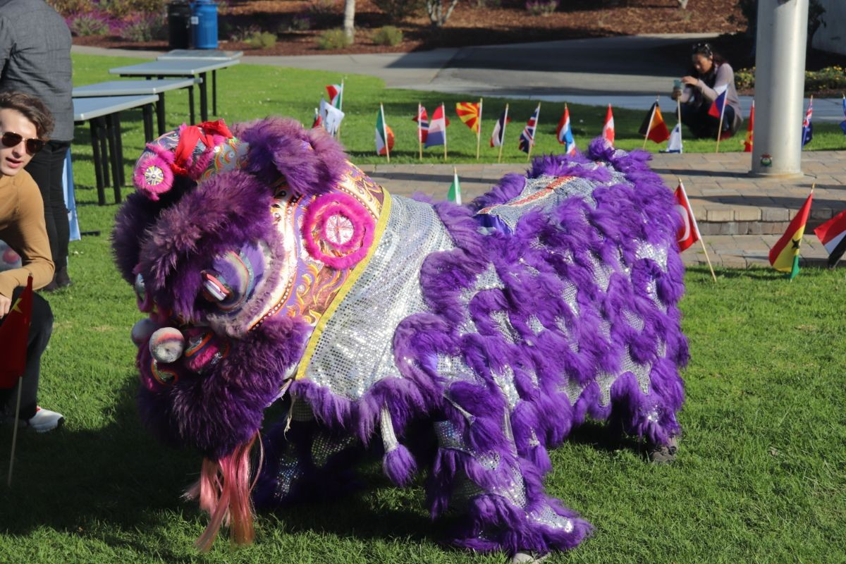 Chinese Lion Dance Dragon