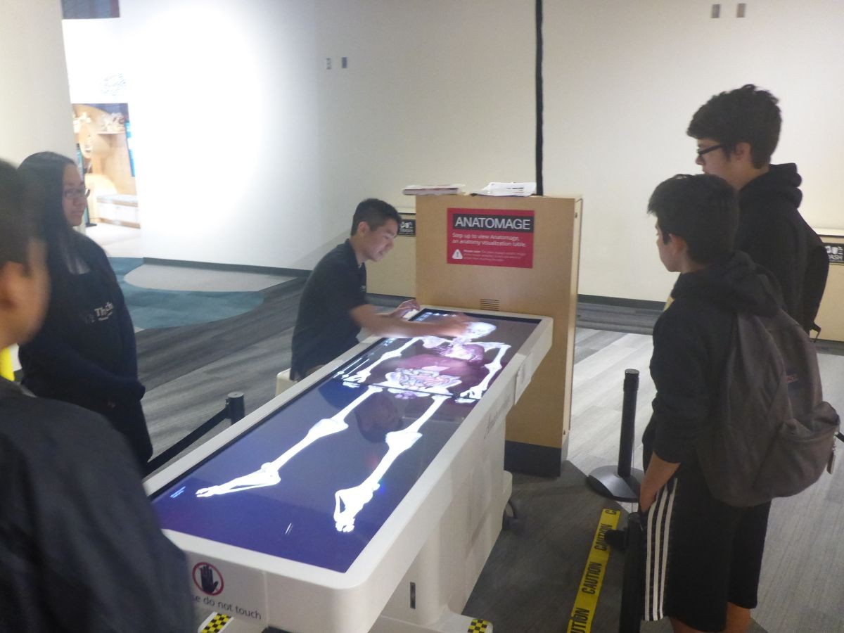 Students view a skeleton on a virtual table that provides info on the human body