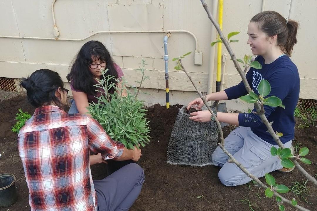 Dr. Victoria Derr's environmental studies students