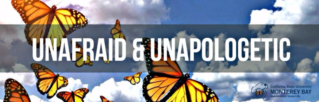Unafraid & Unapologetic Butterfly Image