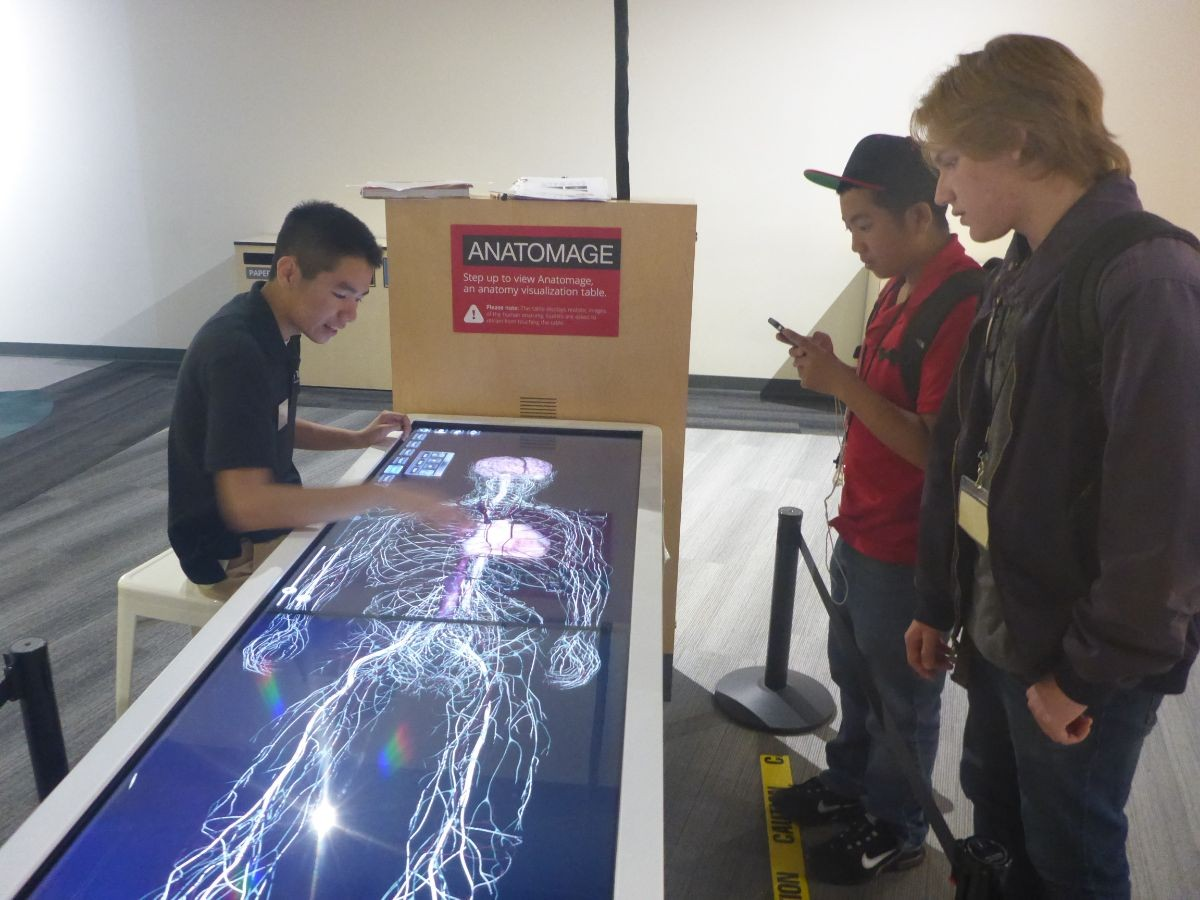 Students view the connections made in the human body through a virtual table.