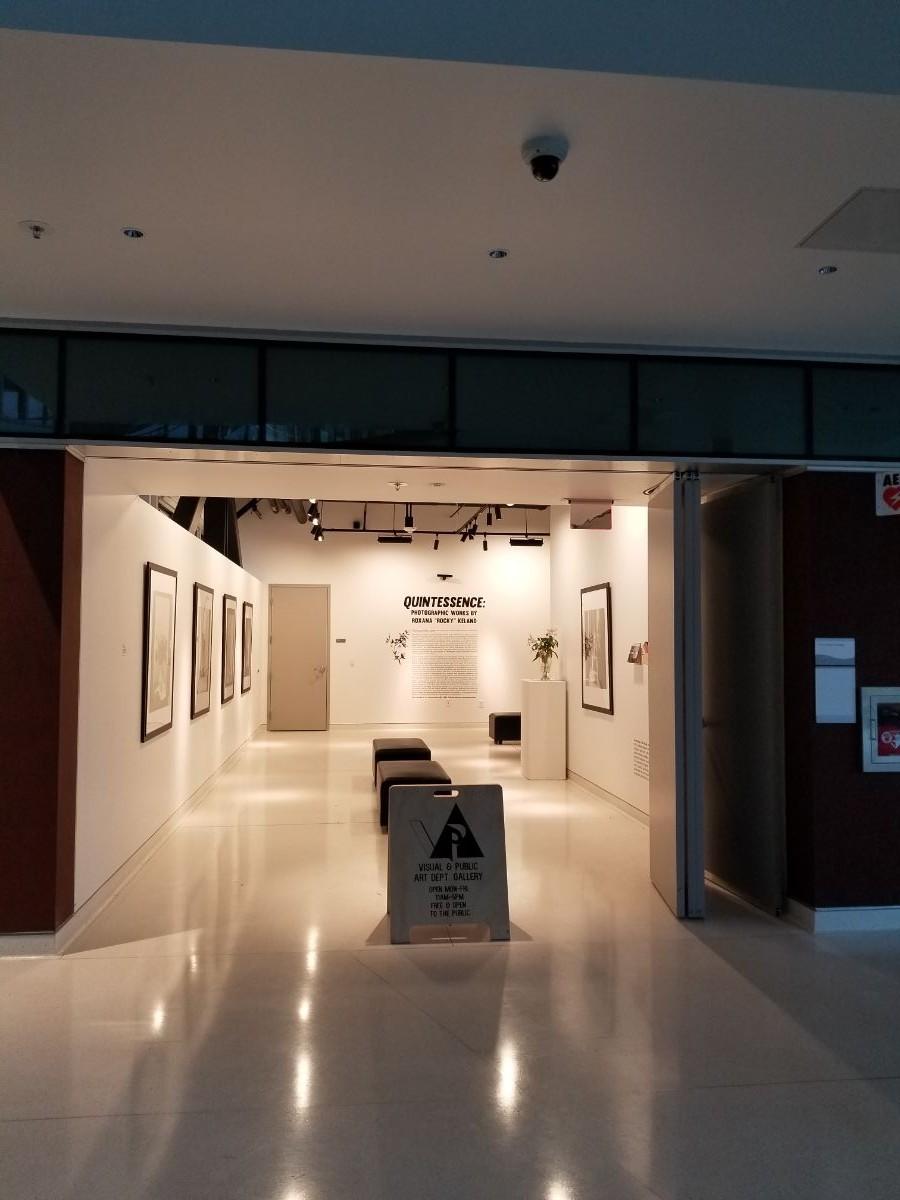 VPA Gallery opens