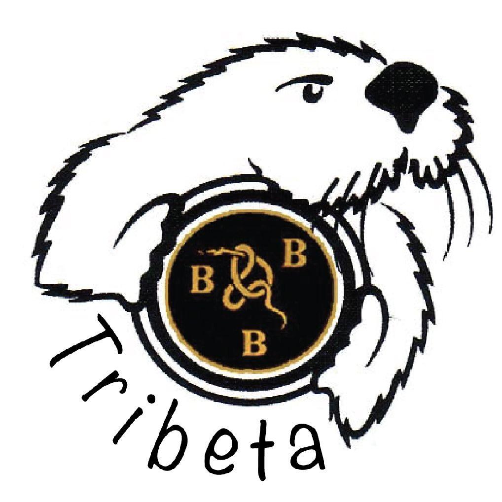TriBeta Logo