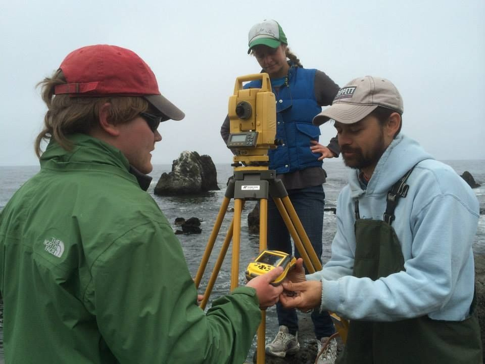 Monitoring intertidal ecosystem