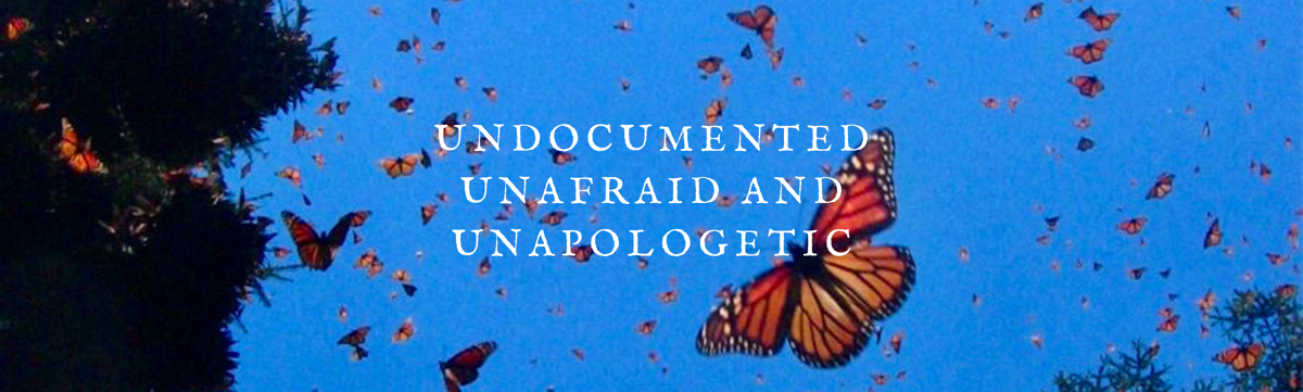 Undocumented, Unafraid & Unapologetic Butterfly Image