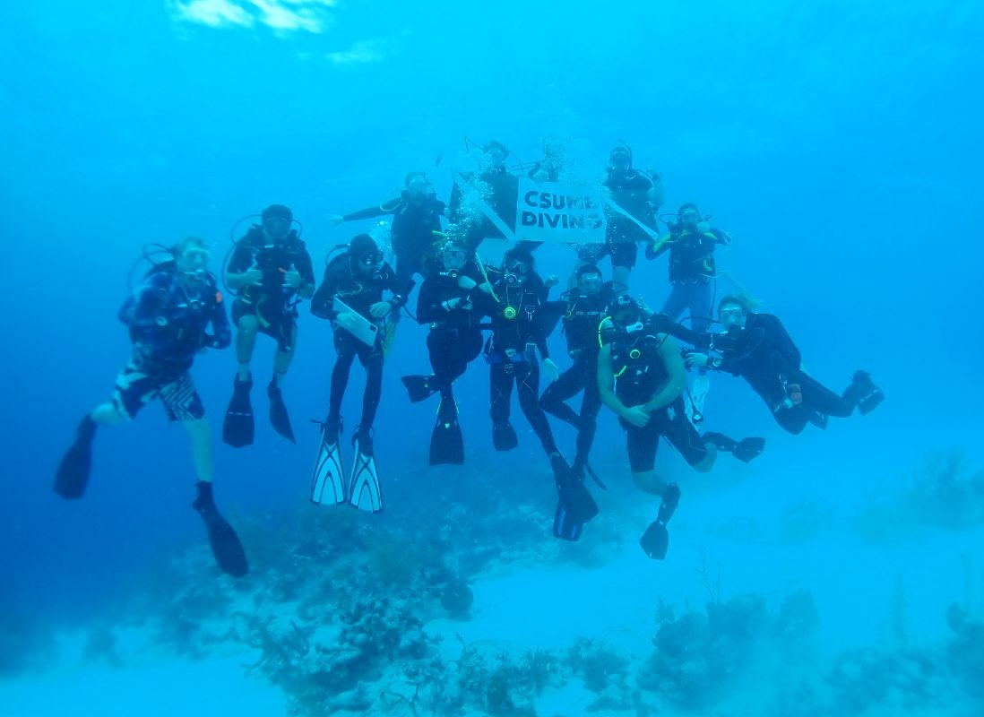 Group of diving program students photographed underwater
