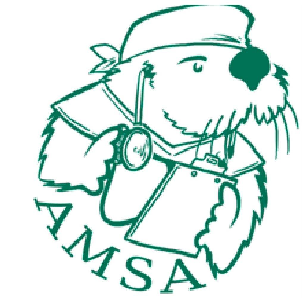 American Medical Student Association Logo