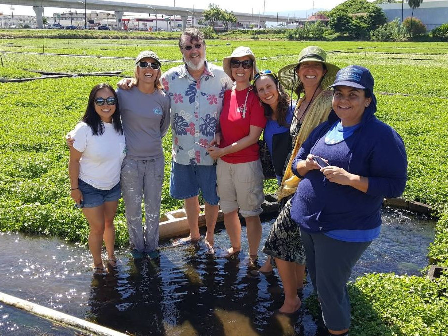 Sumida Farms research in Hawaii